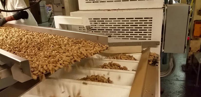 sachs-peanuts